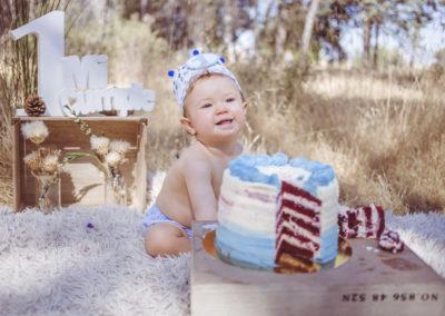 SMASH CAKE (18)